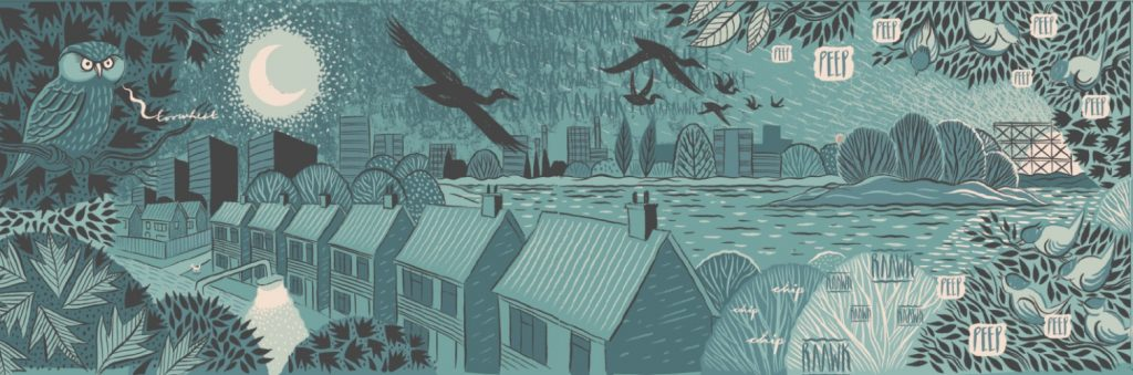 cormorance-1
