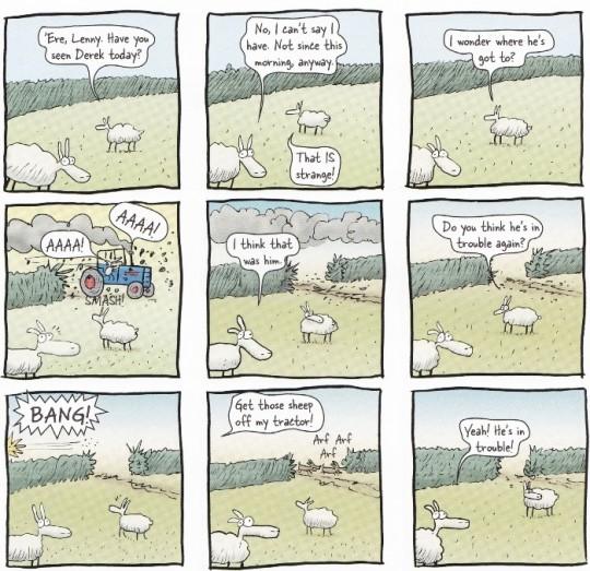 derek-the-sheep-4