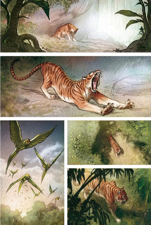 Love vol 1: The Tiger h/c by Frédéric Brrémaud & Federico ...